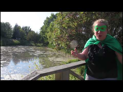 Find Your 4-H Wings is back