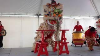 Kwan Lion Dance Cleveland Asian Festival 2010