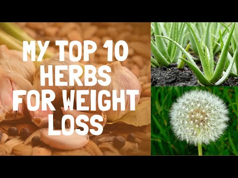 weight-loss-herb---top-10-herbs-for-weight-loss
