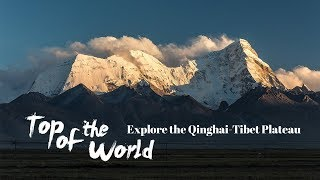Live: Top of the World - Explore the Qinghai-Tibet Plateau深入亚洲心脏-青藏高原