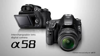 Best DSLR Camera Under $500 ! Top 5