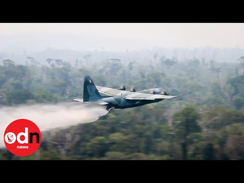 Brazil Sends in the Military as Amazon Fires Rage On