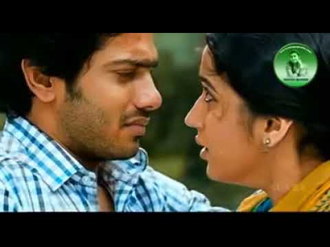 Pranama na pranama video song Telugu folk song