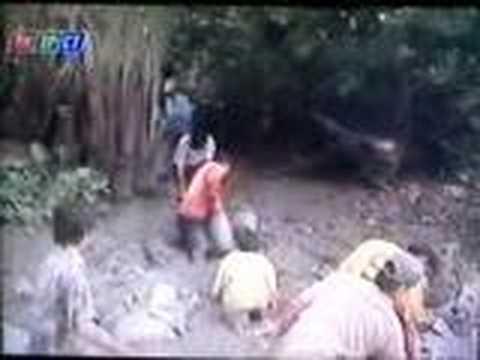 Phong Su ngay 09.01.2008