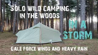 Solo winter wild camping in a storm in the woods | heavy rain and strong winds all night