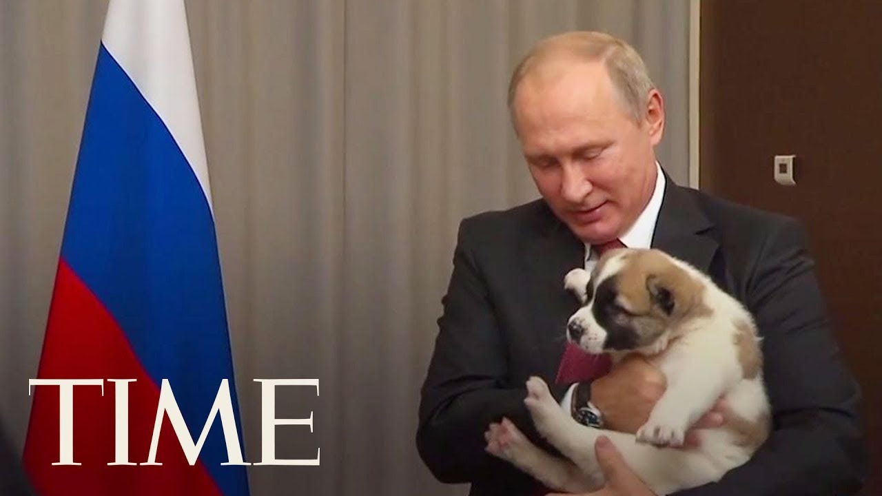 Here S The Awkward Moment When Vladimir Putin Got A Puppy As A Gift Time Youtube