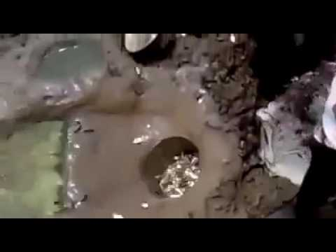 UNIK .........Mancing Hanya Buat Lubang Dapat Ikan Ratusan Ekor