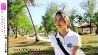 じゅりな 2008~2012 AKB48&SKE48 MV集.