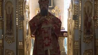 Проповедь епископа Максима в Елецком Знаменском женском монастыре в день отдания Пасхи(, 2014-05-28T10:30:51.000Z)