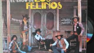 Juanita Y El Mar-Los Felinos.