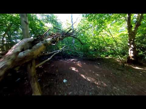 Фото Diatone Taycan FPV GoPro 5 Session Reelsteady Go