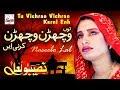 Tu Vichran Vichran Karni - Best of Naseebo Lal - HI-TECH