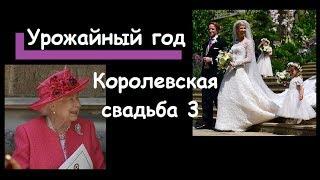 Королевская свадьба 3 : королева выдала замуж племянницу