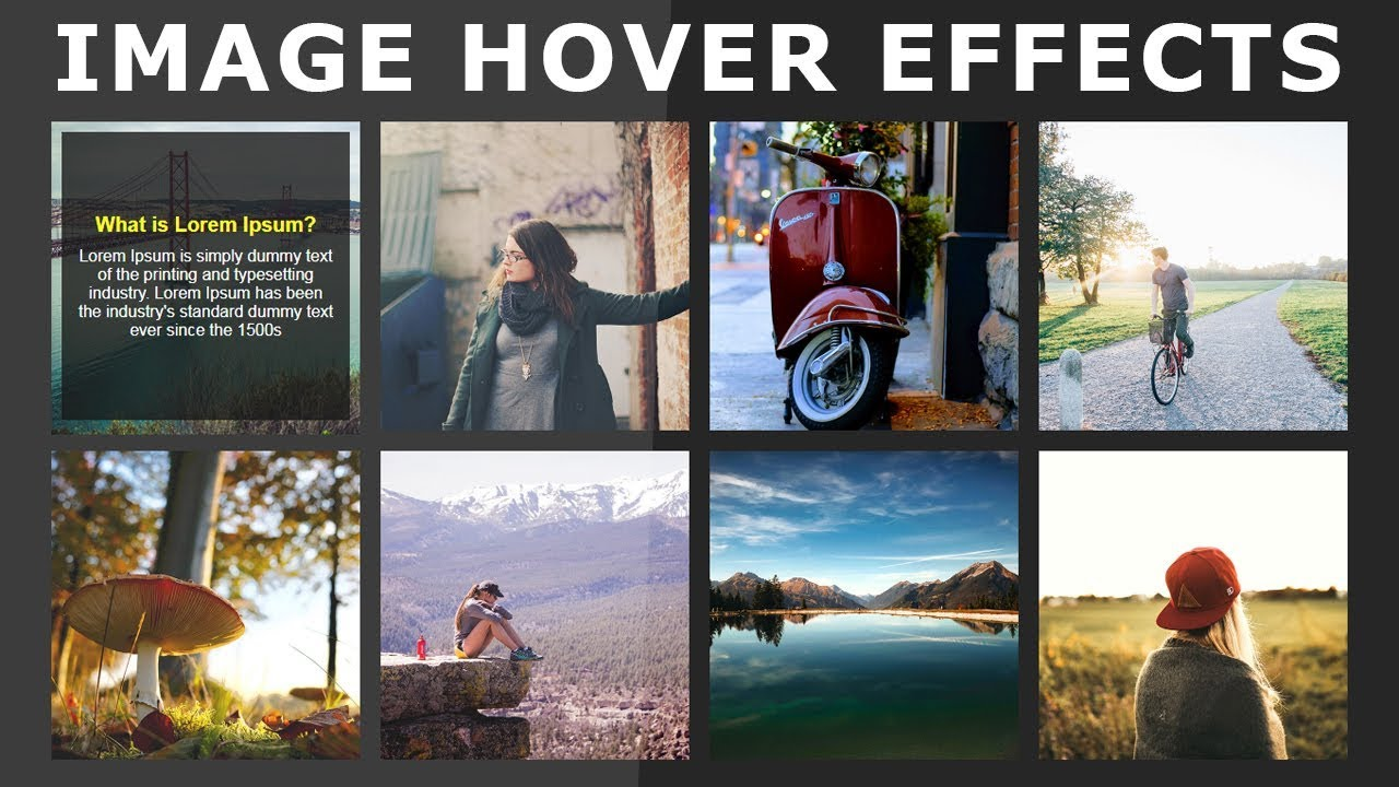Css Image Hover Effects - Pure Css Tutorial - How To Create Image Hover  Overlay Effects