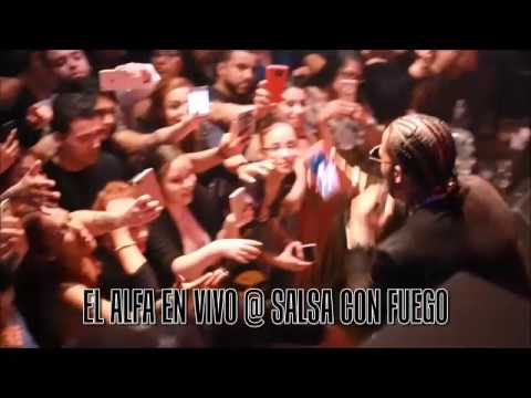 El Alfa Performing live @ Salsa Con Fuego