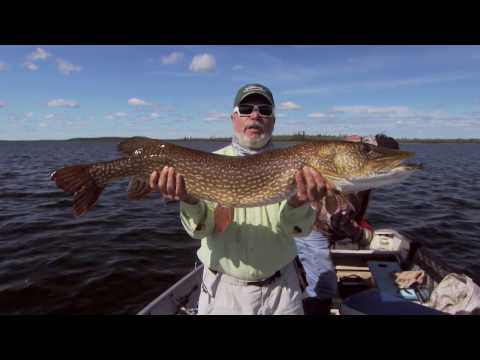 Manitoba Grand Slam Fishing - Gangler's North Seal River Lodge and Outposts