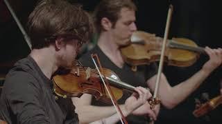 Concerto Lauter - Teatro Comunale