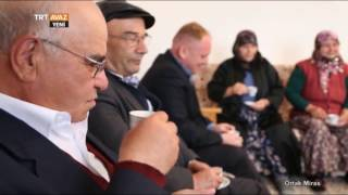 Türk Dünyası'nda Kız İsteme Adeti - Ortak Miras - TRT Avaz