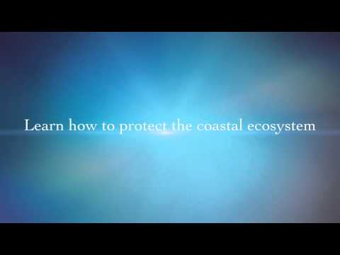 Trailer for Coastal Protection and Conservation Webcast