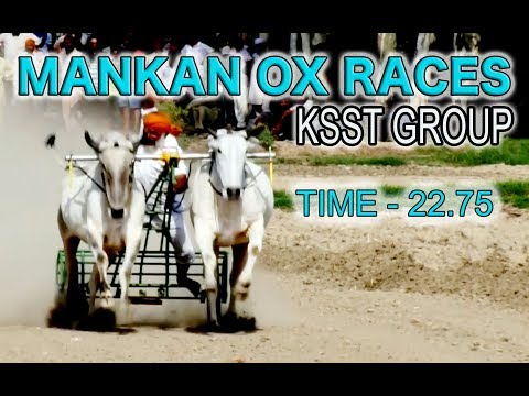KSST GROUP (CANADA) - 3rd Position 🔴 Time - 22.75  🔴 MANKAN OX RACES - 2018 (FULL HD)