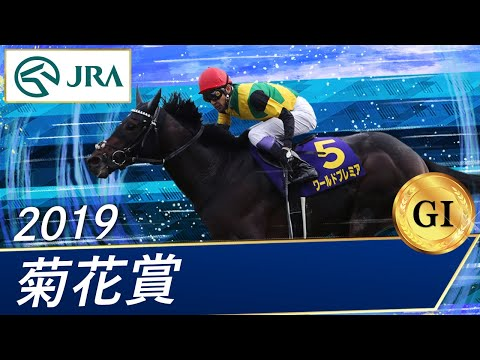 2019 菊花賞