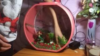 Оформляем аквариум для рыбки 🐠