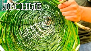 FISH TRAP - UPPER | MORD | MERGE - Native Russian Fish Trap
