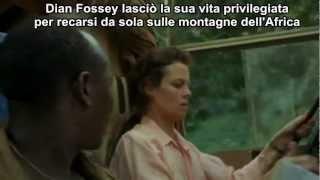 Gorilla nella Nebbia - trailer ita HD  (Gorillas in the Mist)