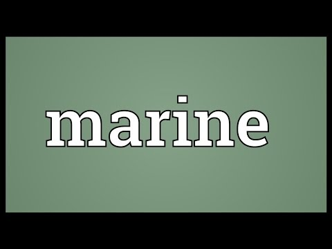Marine Meaning