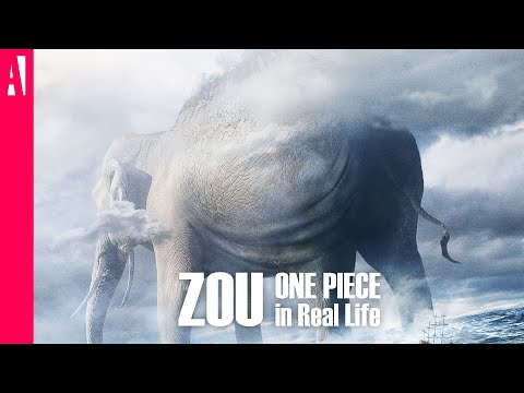 ONE PIECE - Zou - In Real Life - Live Action
