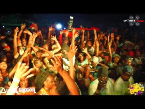 Alex Gregor at Haitian Big bang Festival 2017