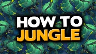 How to Play Jungle in the New Jungle (Patch 8.10) - League of Legends