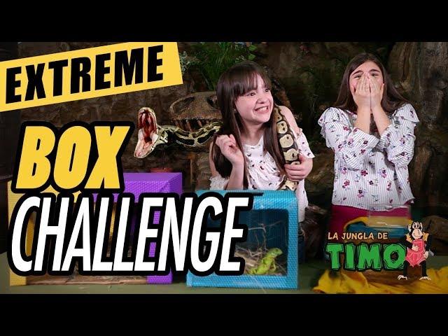 ¿Qué hay en la caja? - Reto Extreme Box Challenge Ivanna Pérez 🙈