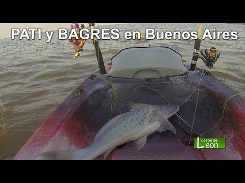 PATI y BAGRES en Buenos Aires