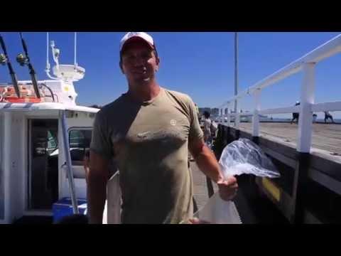 Fishing Charter Sorrento Victoria
