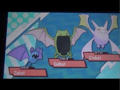 Crobat (Pokémon) - Bulbapedia, the community-driven ...