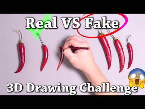 10 Real vs Drawing Illusions to Test Your Brain!