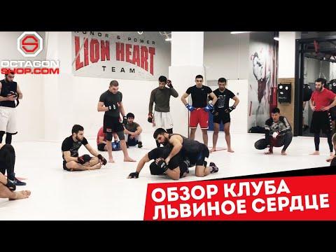 Обзор клуба Львиное сердце