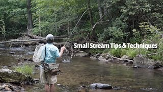 Small Stream tips & techniques | Fly Fishing for Wild Trout