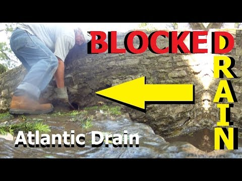 Downspout Drain Cleaning in Lavon