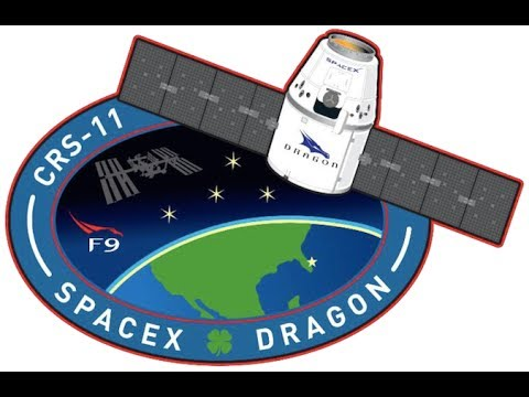Second Attempt Space-X Falcon 9 Launching Dragon CRS-11 To The ISS - Live Mirror And Discussion