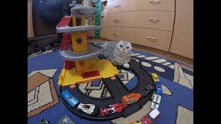 Прикол Котики Kitten 😻Кошка играет с Паркингом 🐱 Игры с Котенком Трек
