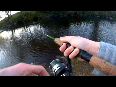 Mepps Spinner Fishing For Brownies | Ireland