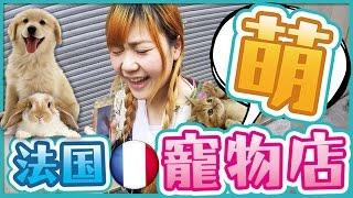 【法國旅遊vlog】太可愛了!Uta帶你逛巴黎的超萌寵物店!vlog pet shop in Paris|Utatv