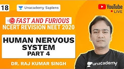 Fast And Furious | NCERT Revision NEET 2020 | L 18 Human Nervous System Part 4 | Biology