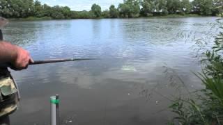 городская рыбалка в москве видео