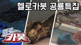 헬로카봇 공룡 특집! Hellocarbot  Dinosaur Episode