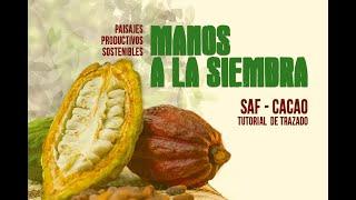 Naturamazonas - Paisajes Productivos Sostenibles - Manos a la Siembra / Tutorial de Trazado