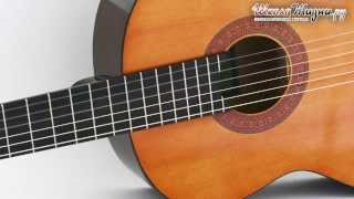 видео Дерево для гитары