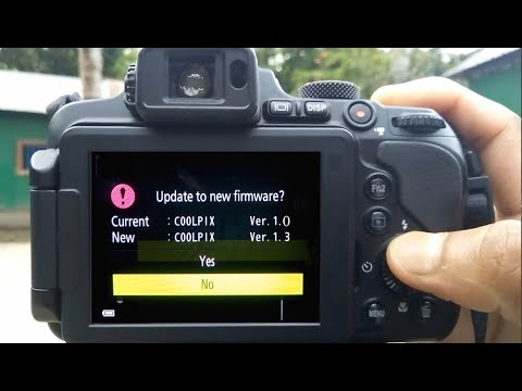 how to update nikon p1000 firmware